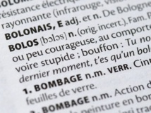 """Un """"schmutz"""" sous la """"gouttine"""": les nouveaux mots des dictionnaires"""