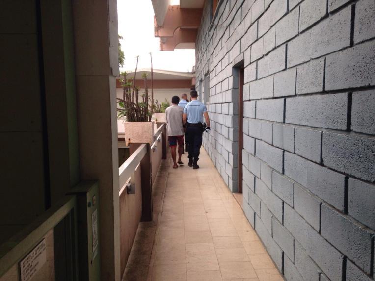 Justice : Six mois de prison ferme pour 4 600 pieds de Pakalolo