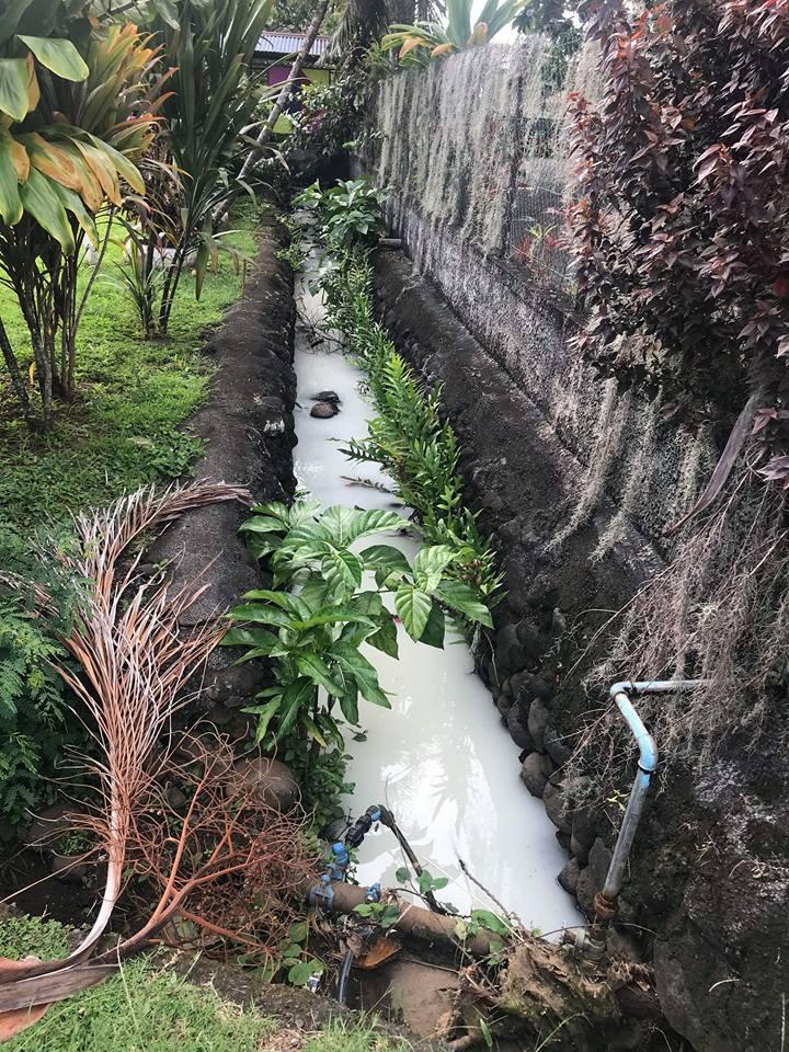 Un liquide blanchâtre a été retrouvé dans le ruisseau qui longe l'école maternelle de Fare Va'a à Mahina.