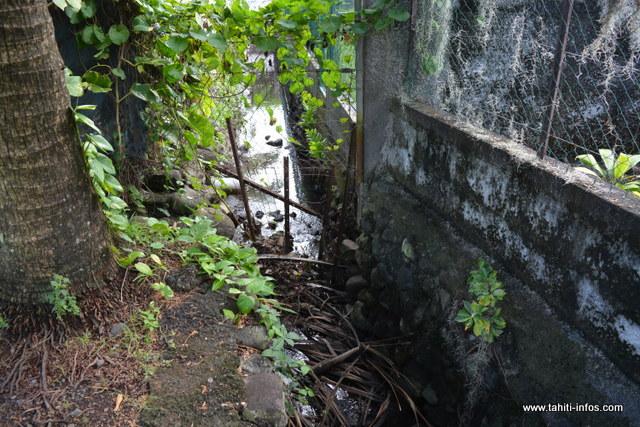 Depuis la mise en place de ce grillage, l'eau déborde durant les pluies. Une situation qui inquiète les riverains, surtout si le ruisseau est pollué.