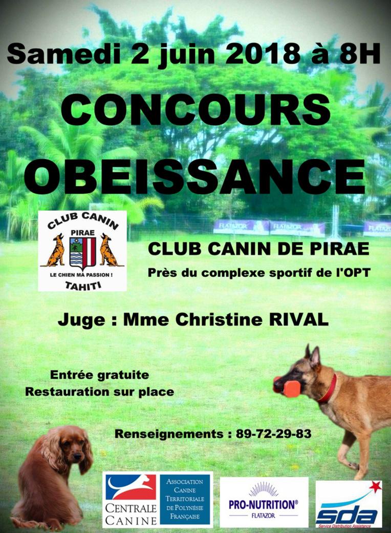 Club canin de Pirae : un concours d'obéissance prévu le 2 juin
