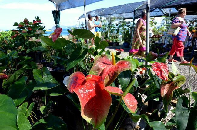 Les floralies fêtent les produits locaux à Mama'o