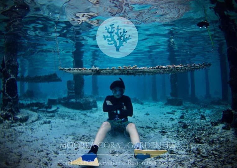 Des jeunes de Moorea agissent pour nos récifs