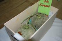Japon: deux melons vendus plus de 25.000 euros, un record