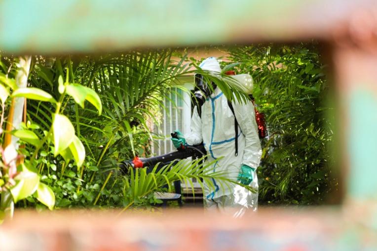 L'épidémie de dengue se poursuit à La Réunion