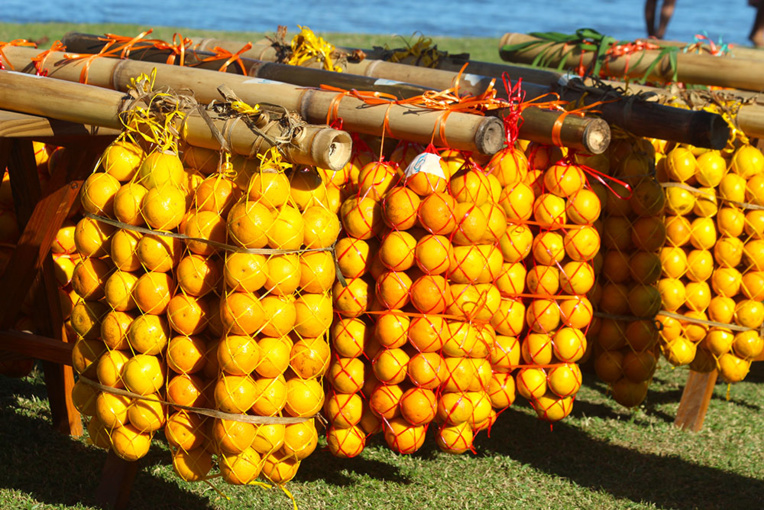 Cette année, la récolte est plutôt modeste, mais les glanes restent spectaculaires.