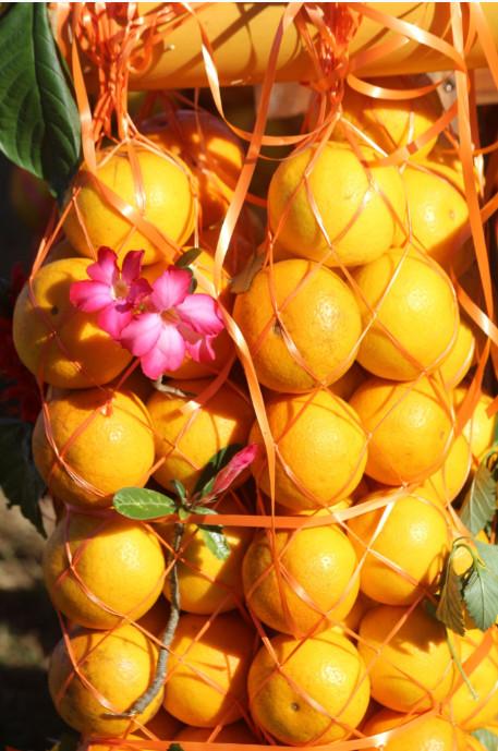 Les glanes sont parfois joliment décorées de fleurs.