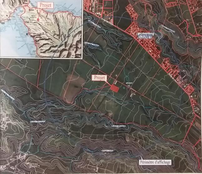 L'élevage porcin sera situé sur le plateau de Taravao, sur le domaine Hiupe.