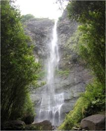 Une adolescente de 15 ans fait une chute mortelle à la Fautaua