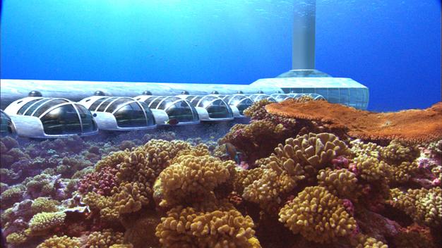 Partager sa nuit avec les poissons du lagon, un rêve!