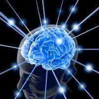 Goût de l'argent et plaisir érotique stimulent des zones différentes du cerveau