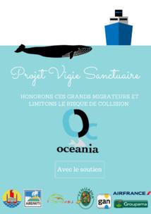 Protection des baleines : OCEANIA lance son projet « Vigie sanctuaire »
