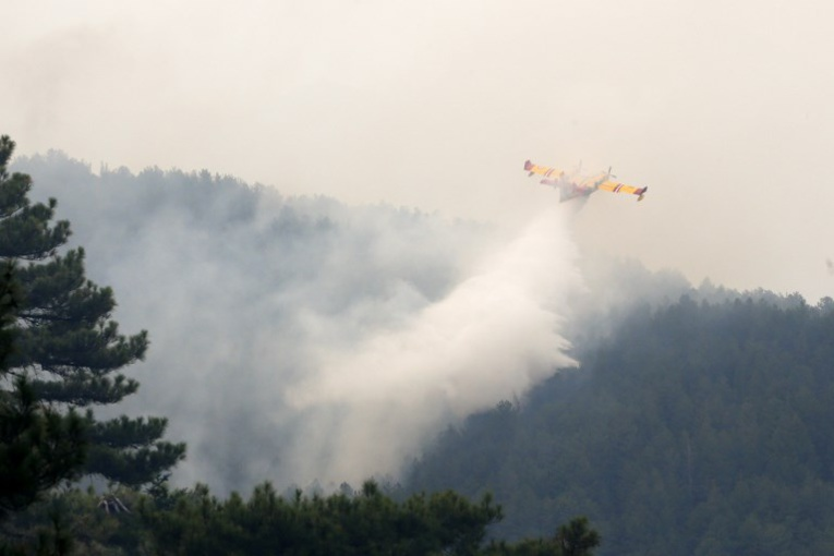 La vague de chaleur en Europe provoque sécheresse et incendies