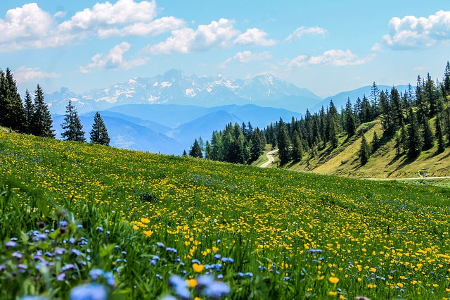 Haute-Savoie: un adolescent se tue lors d'une randonnée familiale