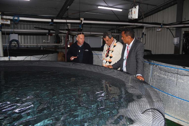 Edouard Fritch poursuit sa visite officielle en Nouvelle-Zélande