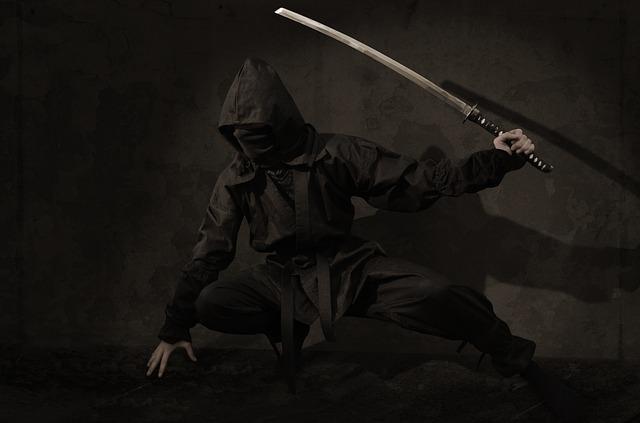 Non, la ville japonaise d'Iga ne recherche pas d'apprentis ninjas !