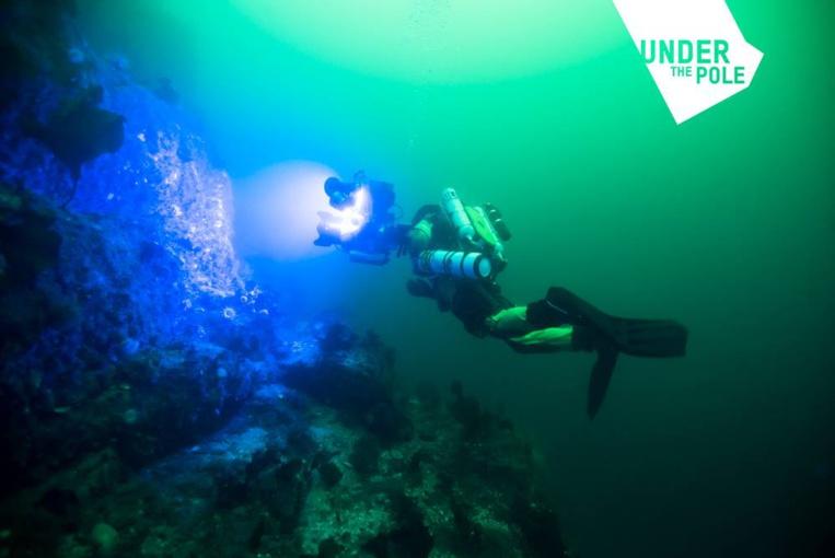 Under the pole : le navire de l'expédition ouvert aux visites samedi