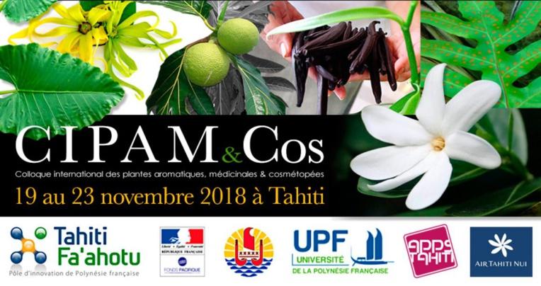 Le prochain Cipam aura lieu à Tahiti