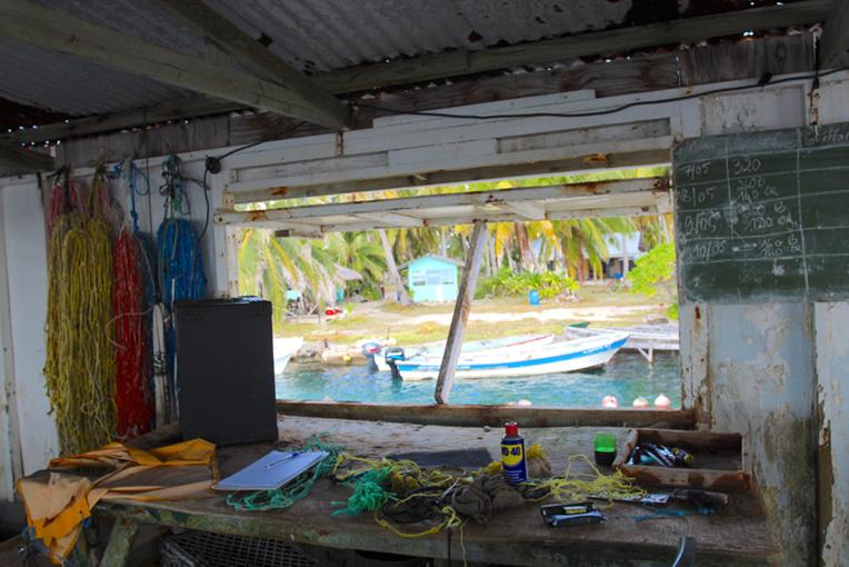 A l'intérieur du fare greffe, avec vue sur le petit port de la ferme.© Daniel Pardon