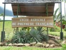 Lycée agricole d'Opunohu : Il reste des places vacantes en 2nde professionnelles