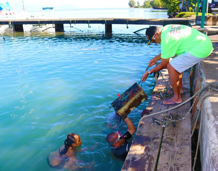 Le nettoyage s'est fait du PK 18,5 au PK 29 (crédit photo : commune de Paea).