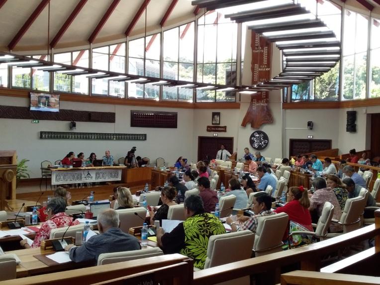 """L'assemblée examine et adopte durant ses sessions les projets de délibération présentées par le gouvernement ainsi que les projets de """"lois du pays""""."""