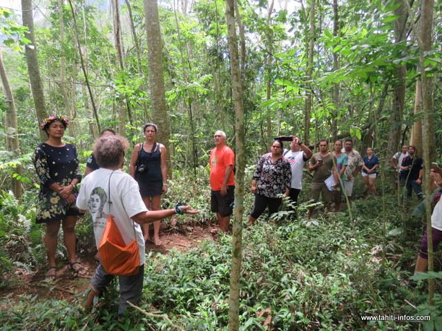 Le projet Rescue consiste à la réalisation de plusieurs actions visant à favoriser le développement durable.