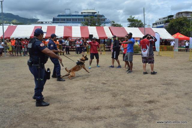 Durant ces rencontres de la sécurité, plusieurs animations ou démonstrations seront mises en place.