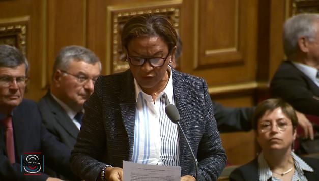 """Plainte de Temaru : Girardin dénonce le """"détournement à des fins politiques locales des juridictions internationales"""""""
