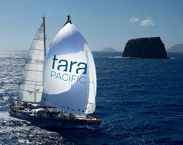 © Francis Latreille – Tara Expeditions Foundation