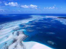 Menace sur les récifs coralliens : l'Océanie en première ligne