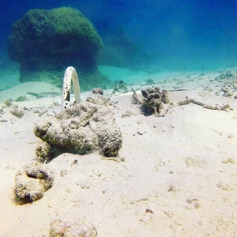 """""""Les mouillages sauvages ne sont pas acceptables, parce que ça détruit l'environnement  de  notre  lagon"""", a insisté Matai Tereua"""