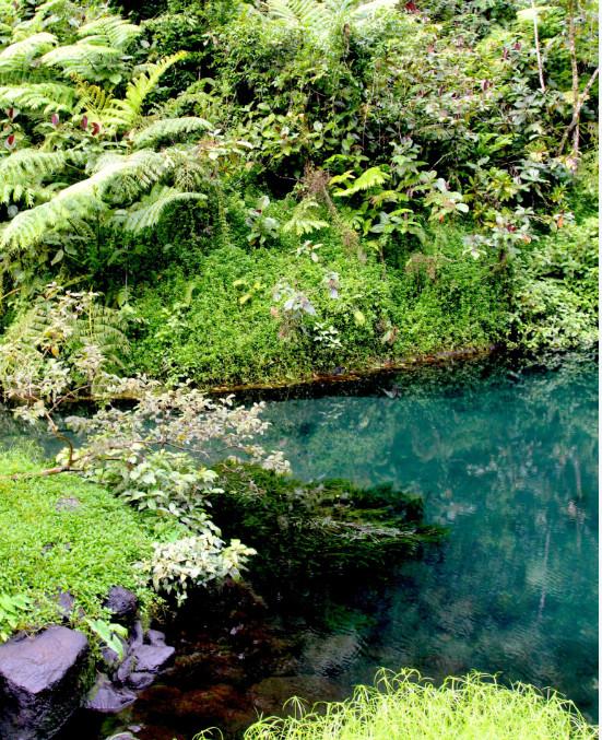 Il est interdit de se baigner dans cette retenue d'eau ; mais avouez que l'on peut être tenté d'y piquer une tête !