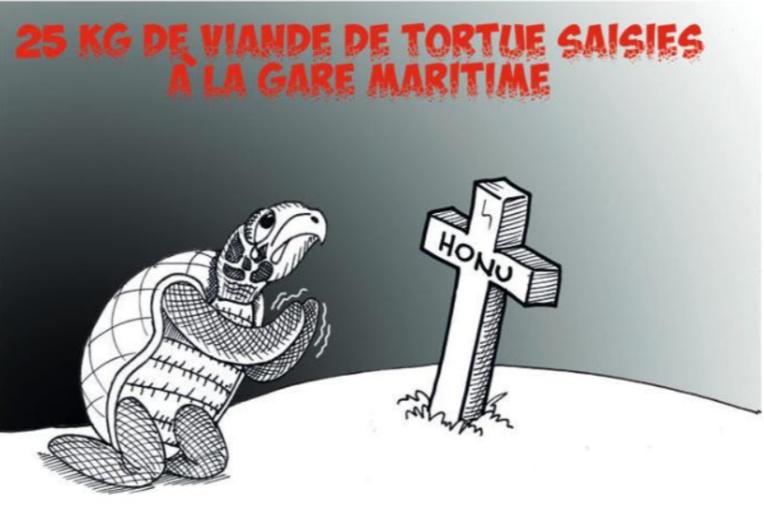 """"""" La contrebande de tortues  """" par Munoz"""