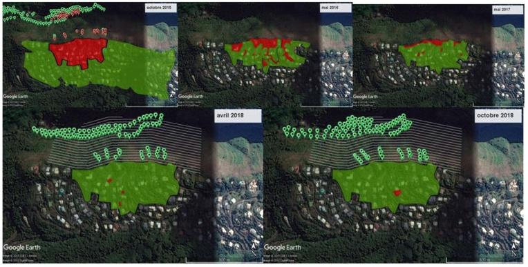 Le cas de Te Maru Ata, dont une falaise donne directement sur une vallée protégée. Chaque point rouge était une zone contaminée par la PFF, on voit qu'elle est désormais presque éradiquée.