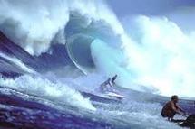 Les surfeurs de Malibu imperturbables face au tsunami californien