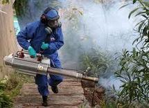Des épandages d'insecticides dans les zones infectées