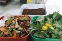 Matière brune + matière humide donne le compost.