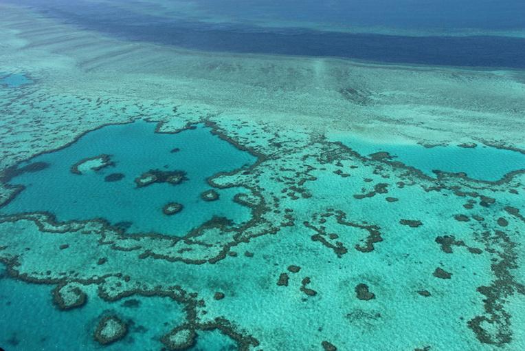 Récifs coralliens: limiter le réchauffement du climat ne suffit pas
