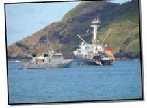 Surveillance des pêches dans le Pacifique : l'agence du Forum peaufine sa stratégie