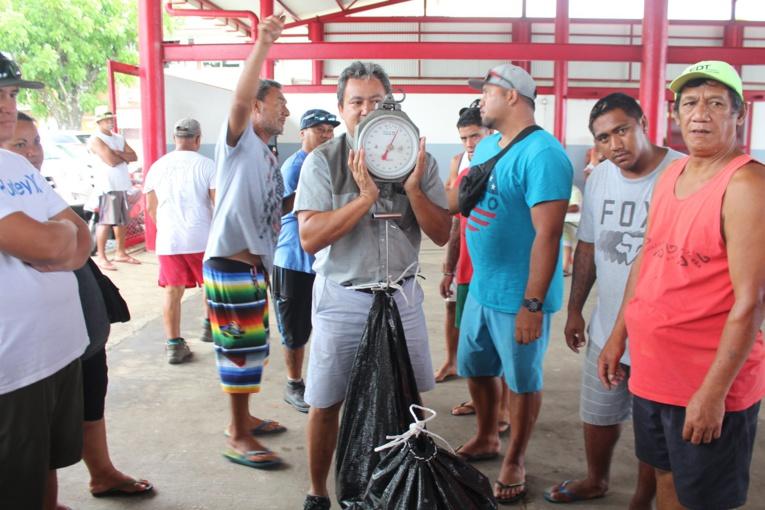 Pêche aux trocas : 23 tonnes récoltées, plus de 7 millions pour les familles de Mataiea