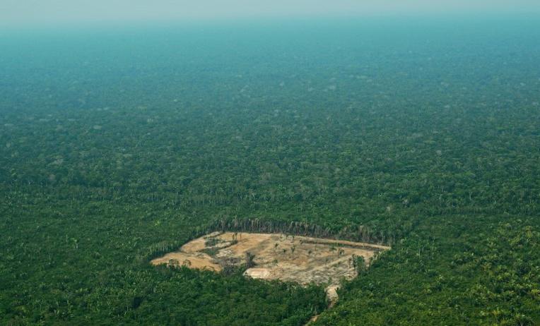 La déforestation en Amazonie sous l'oeil des satellites