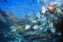 Une île de résidus du tsunami japonais dérive dans l'Océan Pacifique
