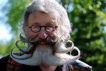 Les plus beaux barbus et moustachus du monde, jardiniers du poil