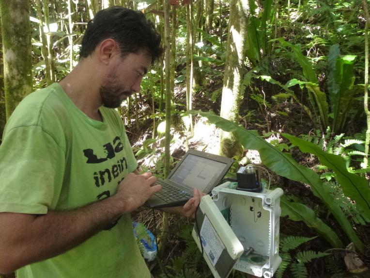 Ravahere Taputuarai à Hamuta en 2015, il relève des données à 900 m (Crédit : Jean-Yves Meyer).