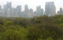 New York: entrée en vigueur lundi de l'interdiction de fumer dans les parcs