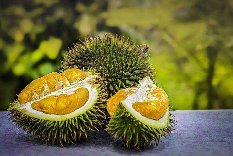 Des durians, savoureux mais à l'odeur nauséabonde, vendus à prix d'or en Indonésie
