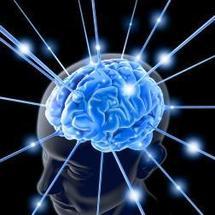 """Epilepsie: des chercheurs identifient un gène """"clé"""""""