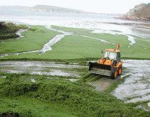 Lutte contre les algues vertes: signature d'un projet pilote en Bretagne
