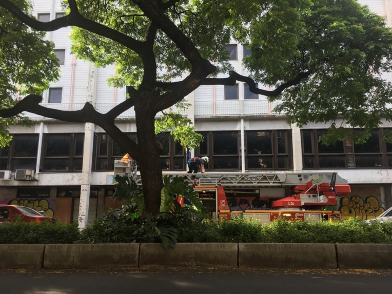 Une partie de l'ancien casino de la rue Prince Hinoi s'effondre